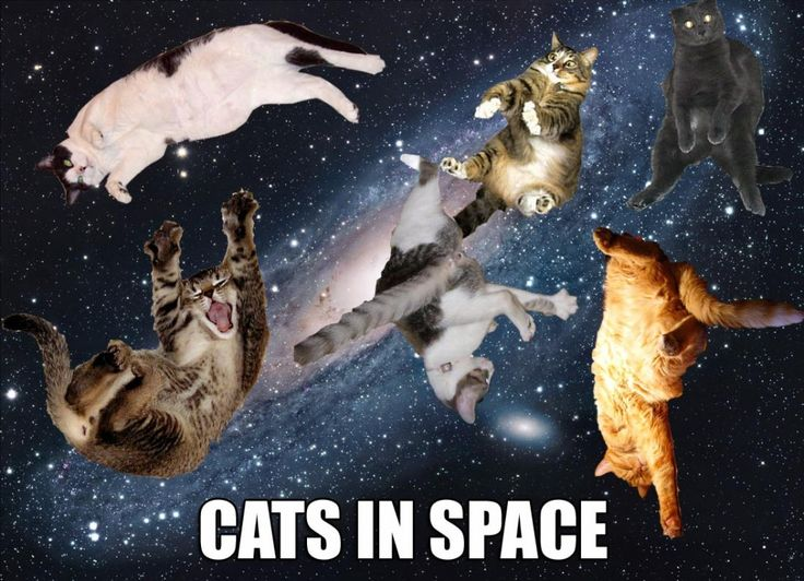 31 Funny Space Meme Pictures You May Have Never Seen Before