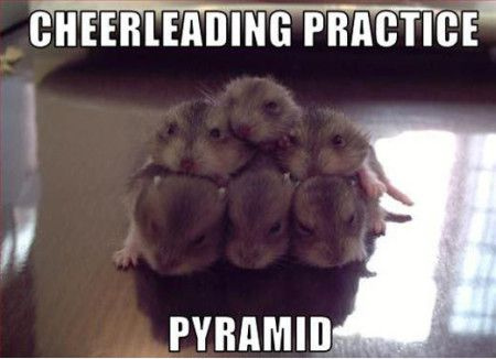 Funny Cheerleading Practice Pyramid Meme Picture