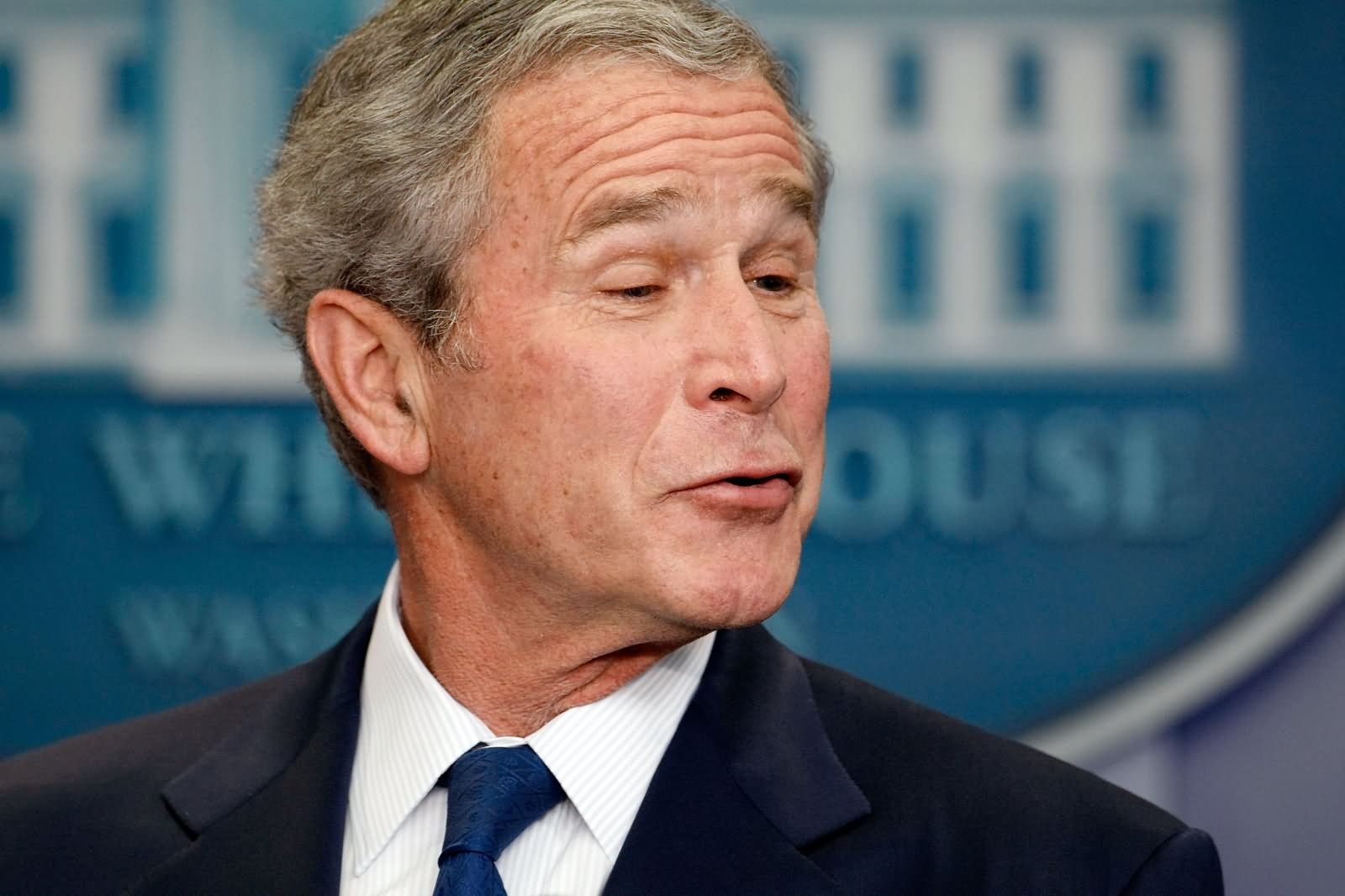 23 Very Funny George Bush Face Pictures And Images That