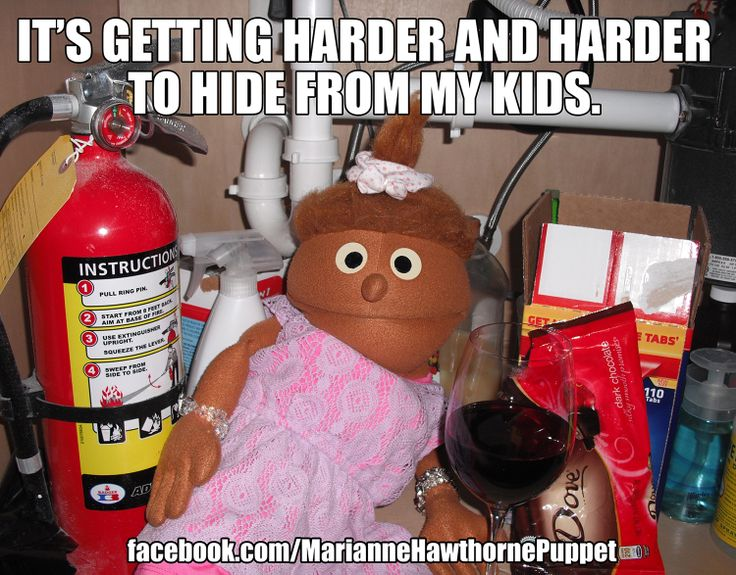 Funny Memes About Life Facebook : 20 most funny puppet meme pictures of all the time