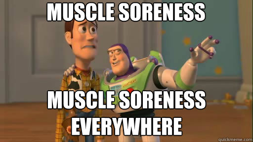 Muscle Soreness Muscle Soreness Everywhere Funny Muscle Meme Image muscle soreness muscle soreness everywhere funny muscle meme image