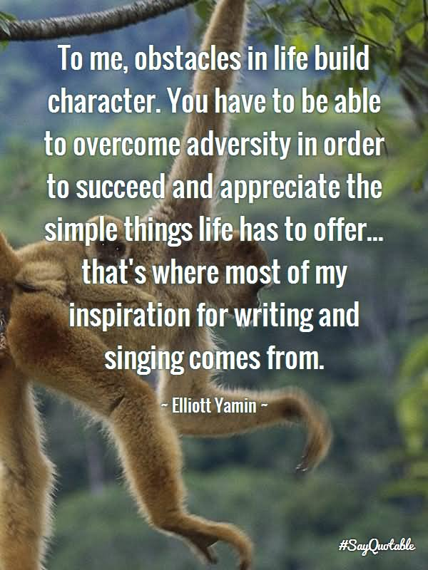 overcoming adversities in life 3 ways to overcome adversity and achieve all your goals how to overcome any adversity it's not about the adversity life is about what you do to overcome.