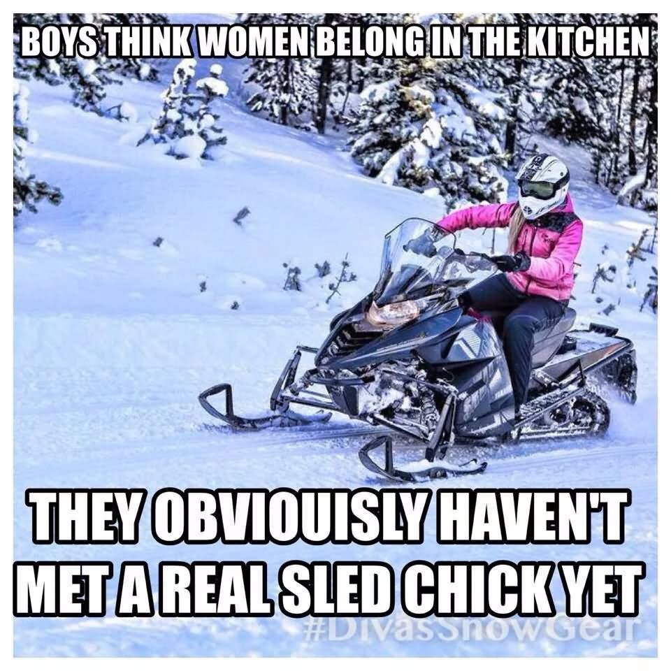Women Quotes In The Kitchen: 25 Most Funniest Sled Meme Pictures On The Internet