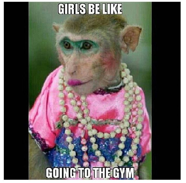 Funny Cool Meme Girls Be Like Going To The Gym Picture