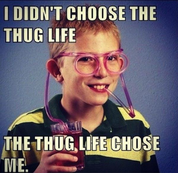 Funny Cool Meme I Didnt Choose The Thug Life The Thug Life Choose Me Image 40 most funny cool meme images and pictures that will make you laugh