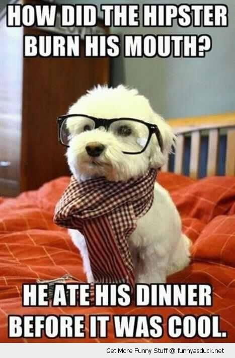 How Did The Hipster Burn His Mouth He Ate His Dinner Before It Was Cool Funny