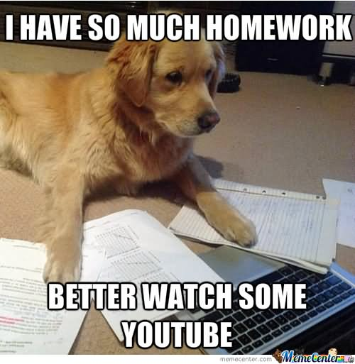 Funny Memes For Homework : Most funny homework meme pictures and photos that will