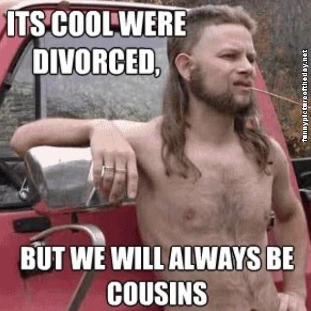 Its Cool Were Divorced But We Will Always Be Cousins Funny Cool Meme Image 40 most funny cool meme images and pictures that will make you laugh