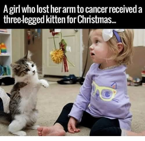 A Girl Who Lost Her Arm To Cancer Received A Three Legged Kitten For Christmas Funny Baby Girl Meme Image baby girl and baby boy funny meme picture,Download Funny Baby Memes
