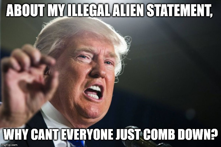 Funny Trump Wall Meme : Funniest donald trump meme images and photos on the internet