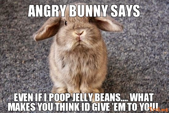 Angry Bunny Says Even If I Poop Jelly Beanswhat Makes You Think Id