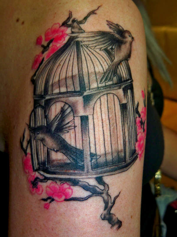 Czeshop Images Bird Flying From Cage Tattoo Meaning