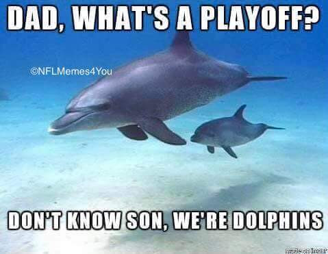 47 Most Funny Dolphin Meme Pictures And Images That Will Make You Laugh