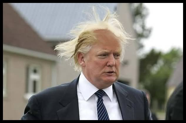 Donald Trump Funny Hair Style Picture