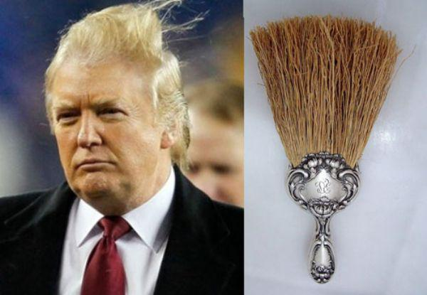 Donald Trump With Brush Hair Funny Image