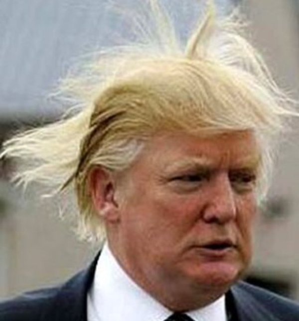 Image result for trump funny hair
