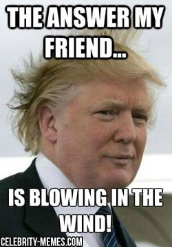 Funny Donald Trump Meme The Answer My Friend Is Blowing In The Wind Image