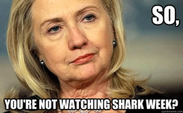 Funny Hillary Clinton Meme You Are Not Watching Shark Week Picture