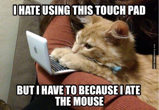 25 Most Funniest Mouse Meme Pictures And Images Of All The