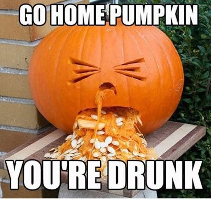 Funny Meme Halloween : Most funniest pumpkin meme images on the internet
