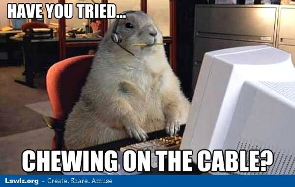 Have You Tried Chewing On The CableFunny Technology Meme Image 42 funniest technology meme images and pictures of all the time,Support Funny Memes