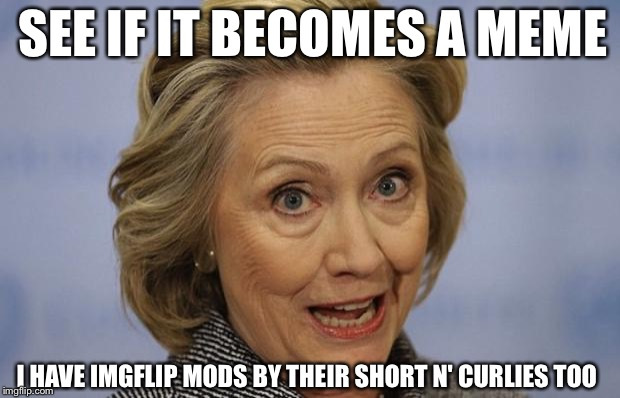 I Have Imgflip Mods By Their Short N' Curlies Too Funny Hillary Clinton Meme Picture