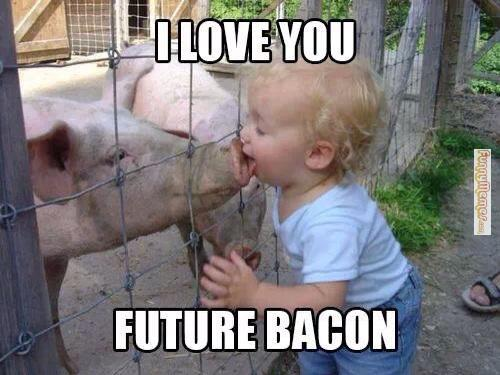 Funny Meme On Love : 40 most funniest love meme pictures on the internet