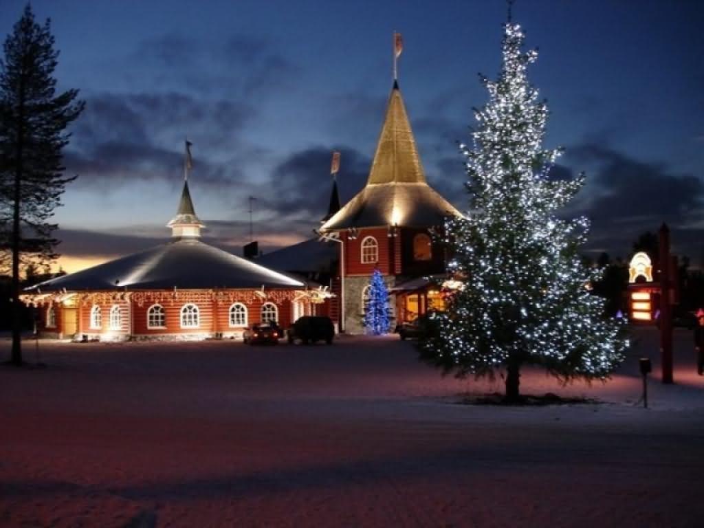 Illuminated Christmas Tree At The