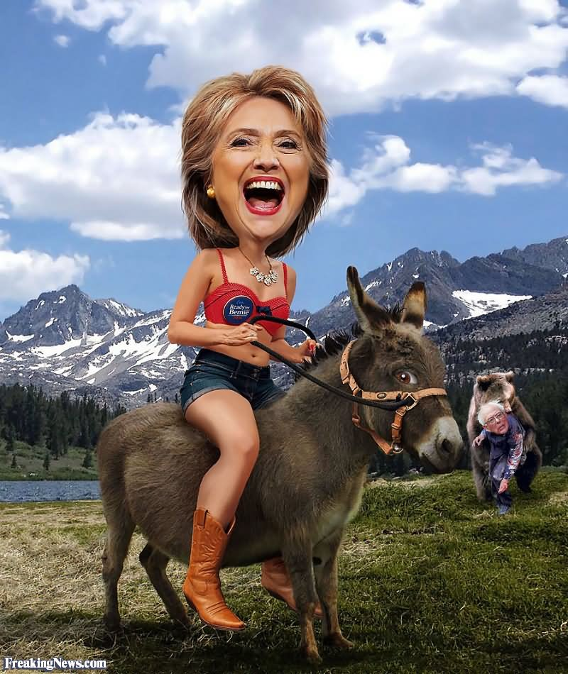Laughing Hillary Clinton On Donkey Very Funny Picture