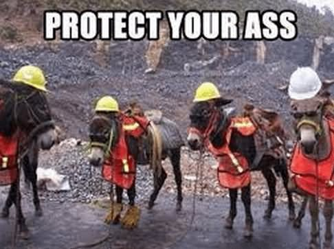 Protect Your Ass Funny Safety Meme Photo For Whatsapp - Download funny safety photos