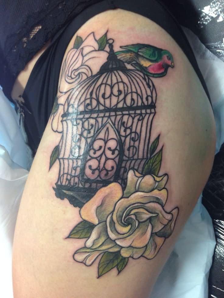 Open Bird Cage Tattoo 45+ Best Cage Tattoos