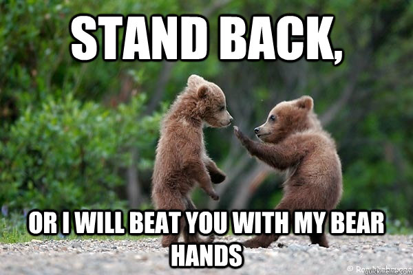 Funny Girl Fight Quotes: 22 Very Funny Karate Meme Pictures
