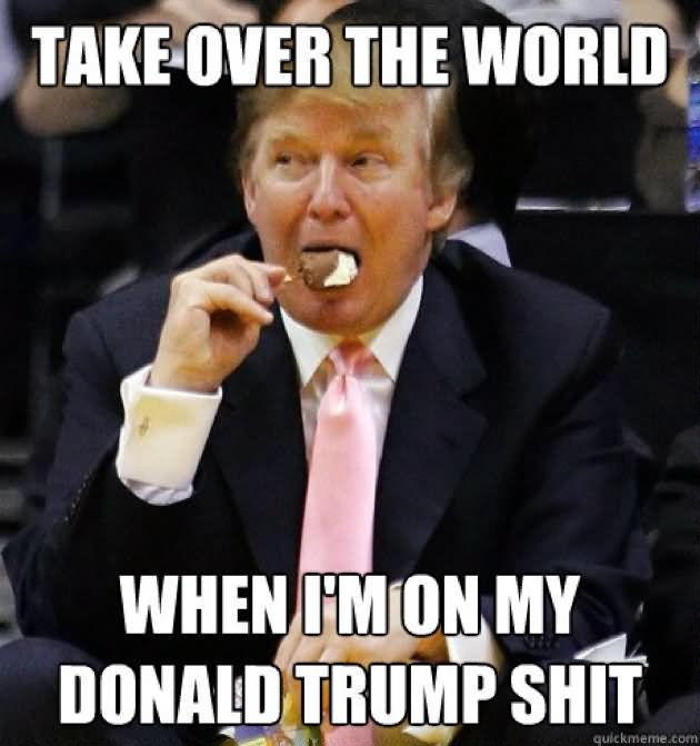Take Over The World When I Am On My Donald Trump Shit Funny Meme Picture