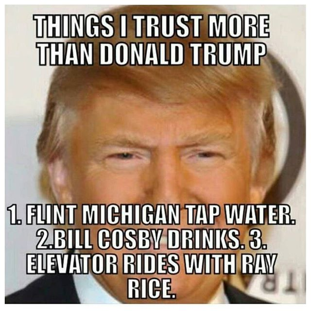 Things I Trust More Than Donald Trump Funny Donald Trump Meme Image