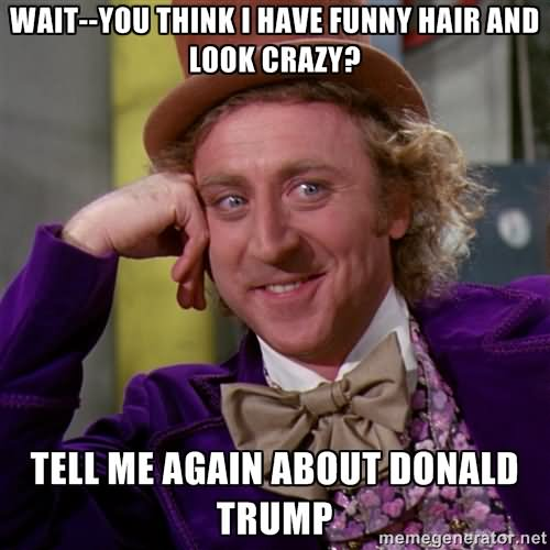 Wait--You Think I Have Funny Hair And Look Crazy Tell Me Again About Donald Trump Funny Meme Image