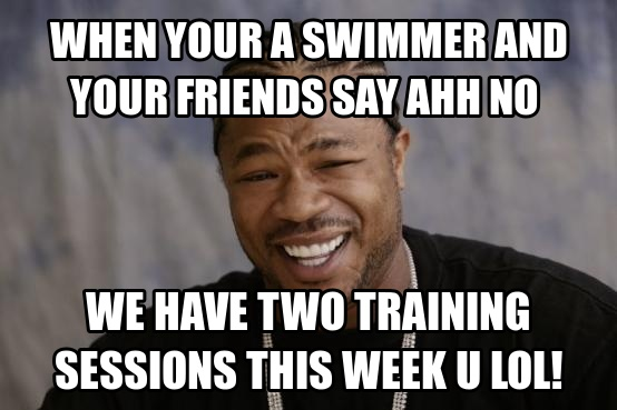 Funny Training Meme : Most funniest swimming meme pictures of all the time