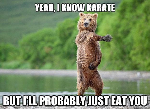 Funny Kickball Meme : Very funny karate meme pictures