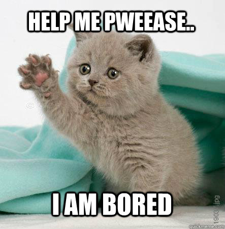 Cat-Say-Help-Me-Pweease-I-Am-Bored-Funny-Bored-Meme-Image.jpg