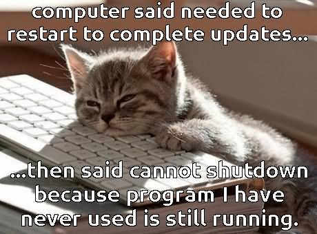 Computer Said Needed To Restart To Complete Updates Funny Computer Meme Picture don't worry i am from tech support funny computer meme picture,Support Funny Memes