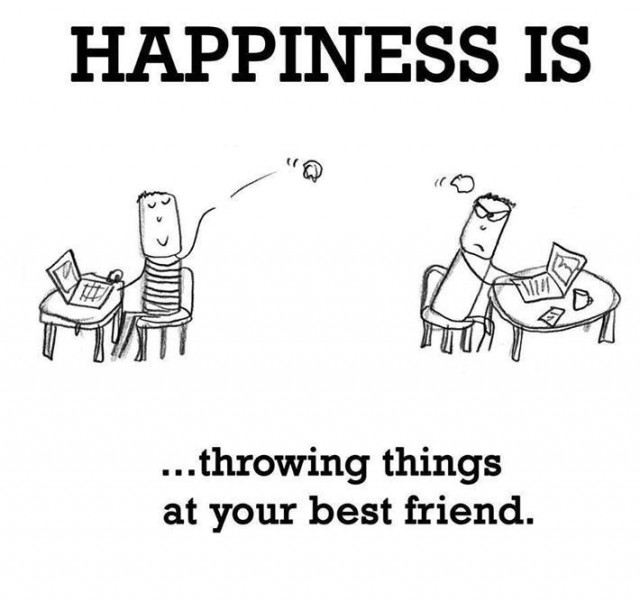 Happiness Is Throwing Things At Your Best Friend Funny Photo