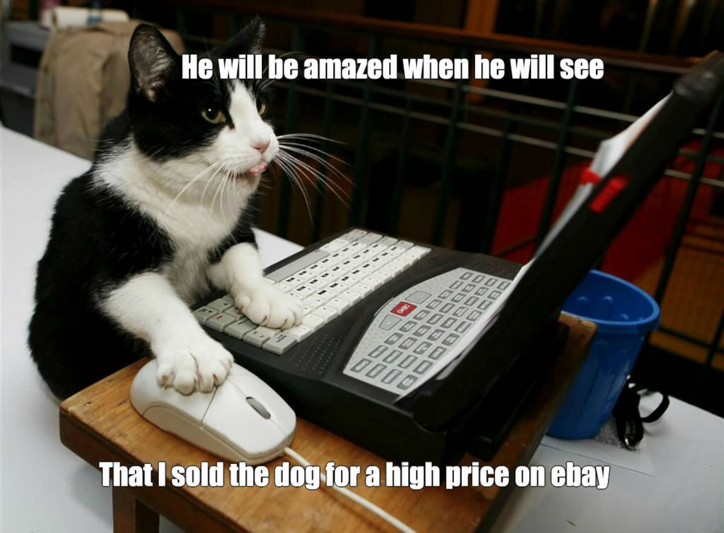He Will Be Amazed When He Will See That I Sold The Dog For A High Price On Ebay Funny Computer Meme Image