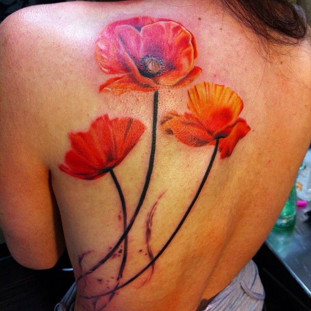 45 awesome poppy tattoos poppy flowers tattoo on left back shoulder mightylinksfo Choice Image