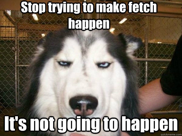 [Image: Stop-Trying-To-Make-Fetch-Happen-Its-Not...icture.jpg]