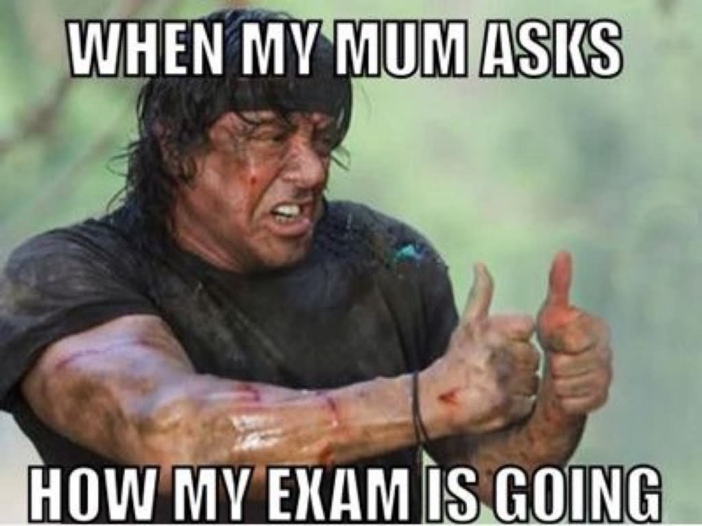 Funny Meme Questions To Ask : Very funny exam meme pictures and images of all the time