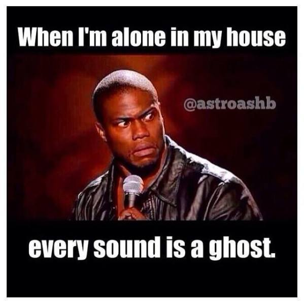 When I Am Alone In My House Every Sound Is A Ghost Funny Meme Picture 22 most funniest being alone memes that will make you laugh