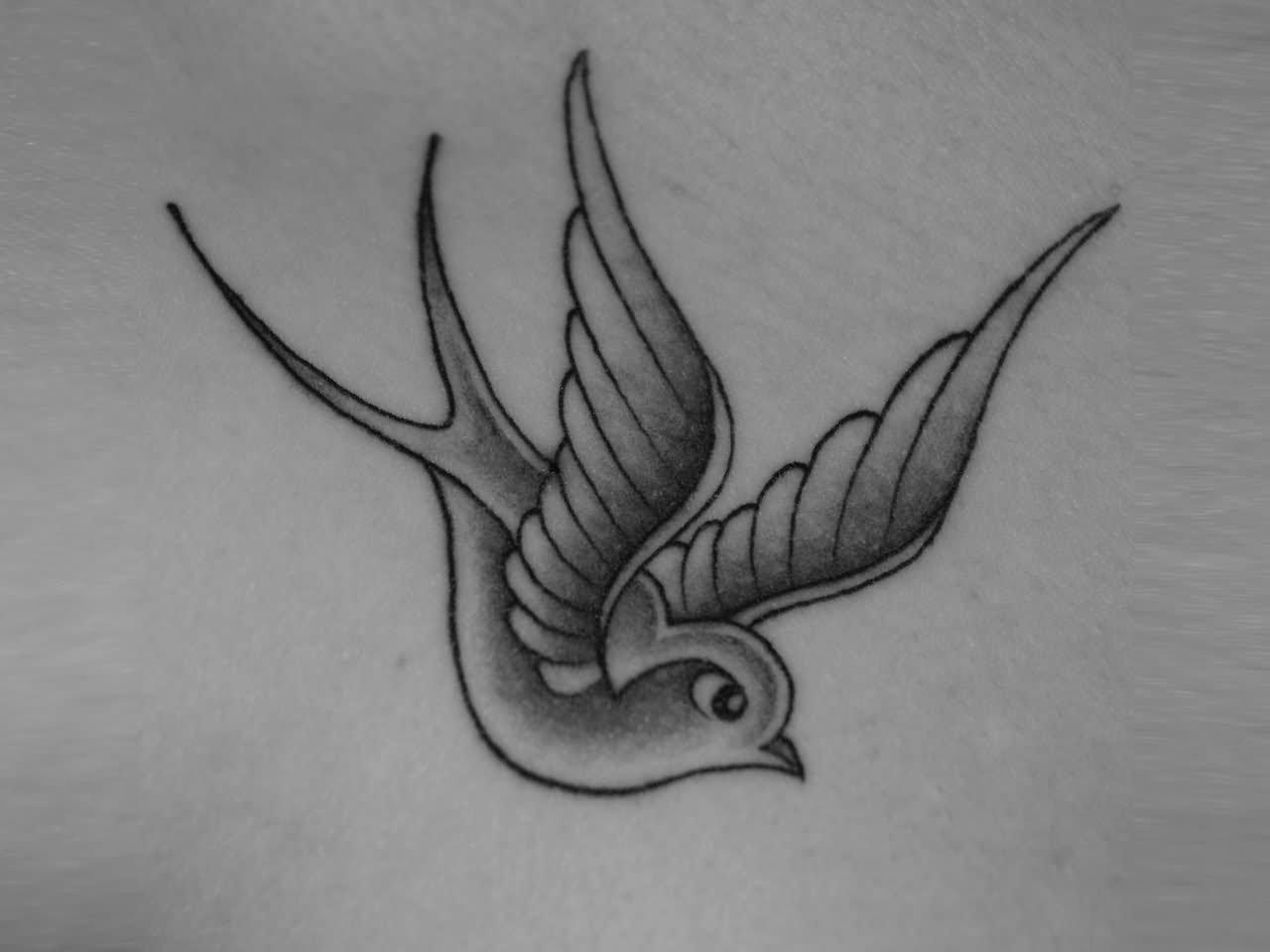 29+ Latest Sparrow Tattoo Designs Black Sparrow Tattoo Designs