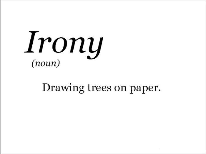 Essay on irony