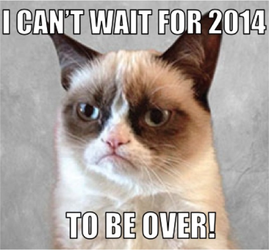 Funny Grumpy Cat I Cant Wait For 2014 To Be Over Image