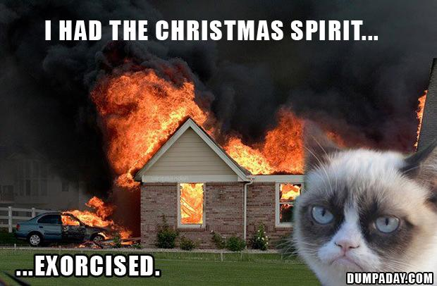 Funny Grumpy Cat Christmas Memes.30 Very Funny Grumpy Cat Pictures And Images You Need To See