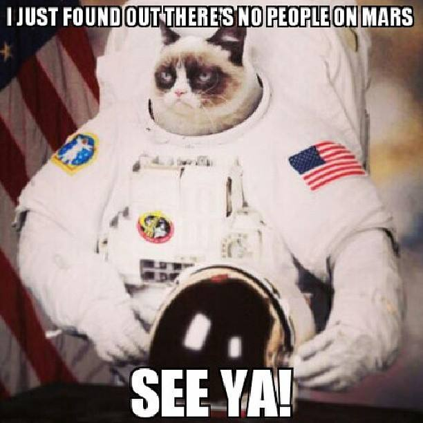 Funny Meme Grumpy Cat : Very funny grumpy cat meme pictures and photos